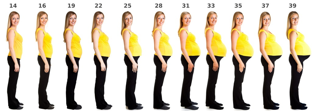 When Do I Start Showing If I'm Pregnant | Signs Showing Im