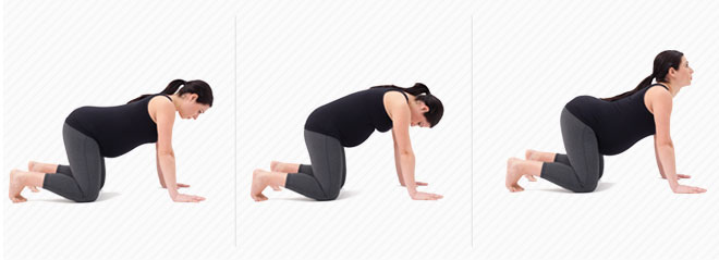 Back Pain Pregnancy First Trimester